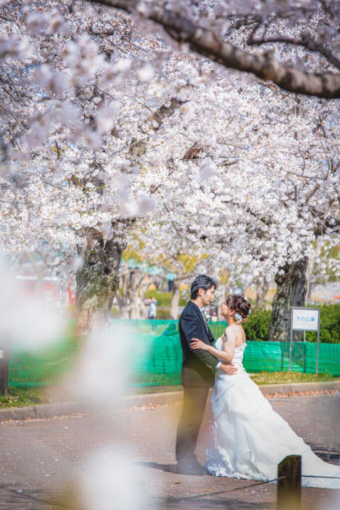 pareja con traje de boda bajo cerezos en flor en pájaro posado en un cerezos en flor en el parque expo '70 osaka