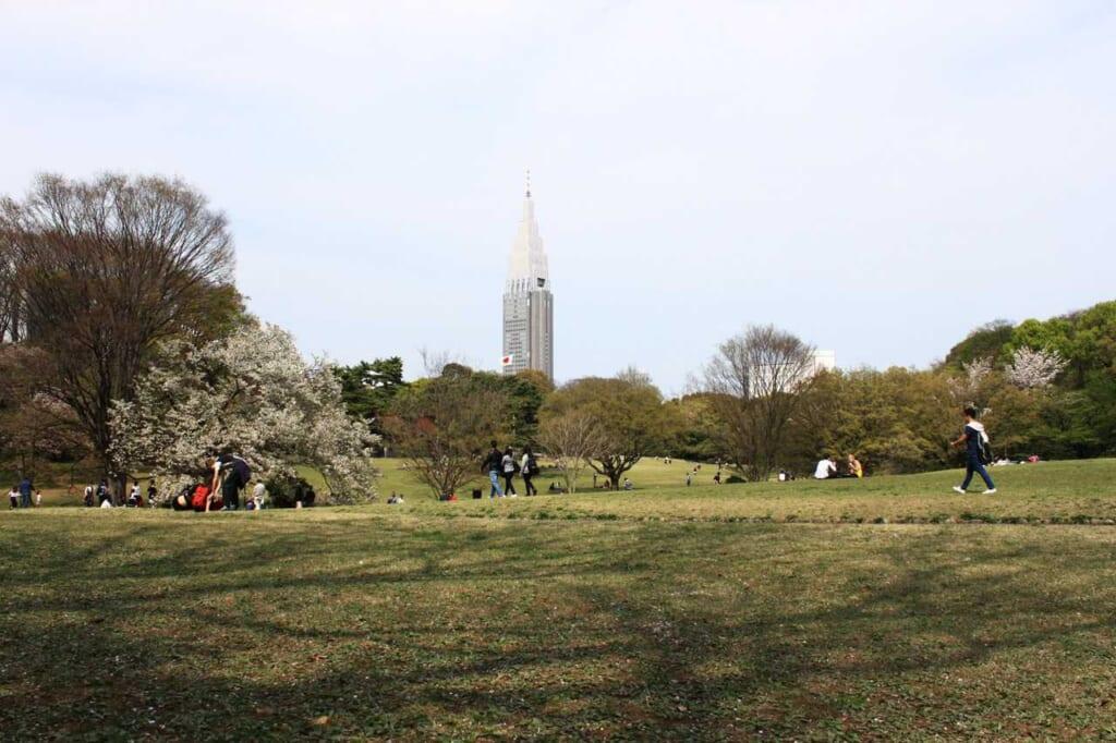 El jardín japonés en Tokio de Yoyogi Koen con la antena de Docomo de Shinjuku detrás