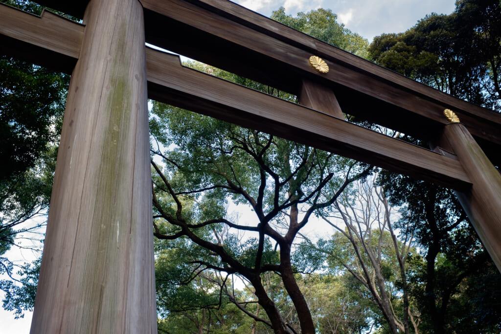 Uno de los gran toriis de madera en el Meiji-jingu