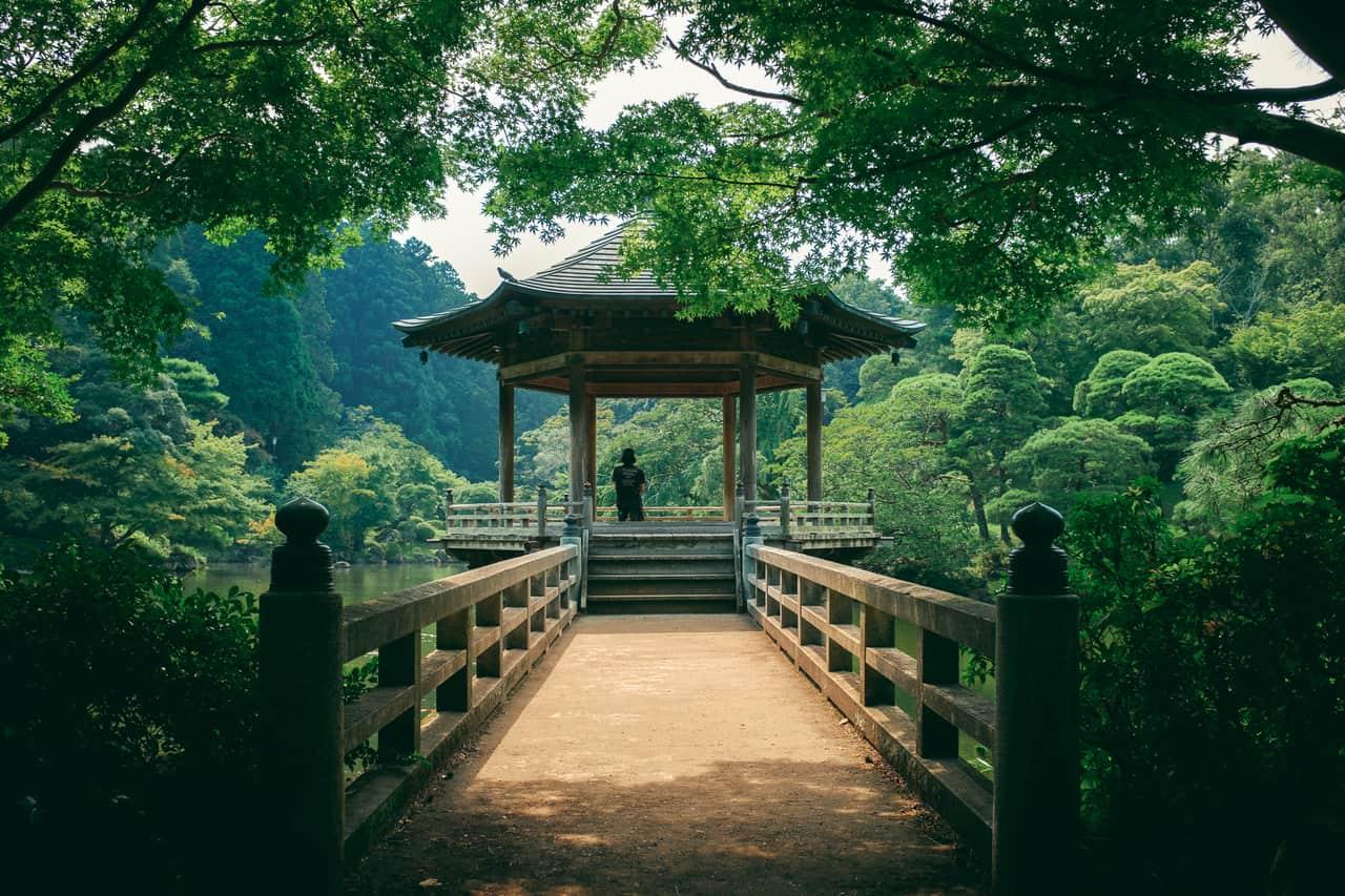 Jardines japoneses en Tokio: nuestro top 8 para visitar durante tu viaje