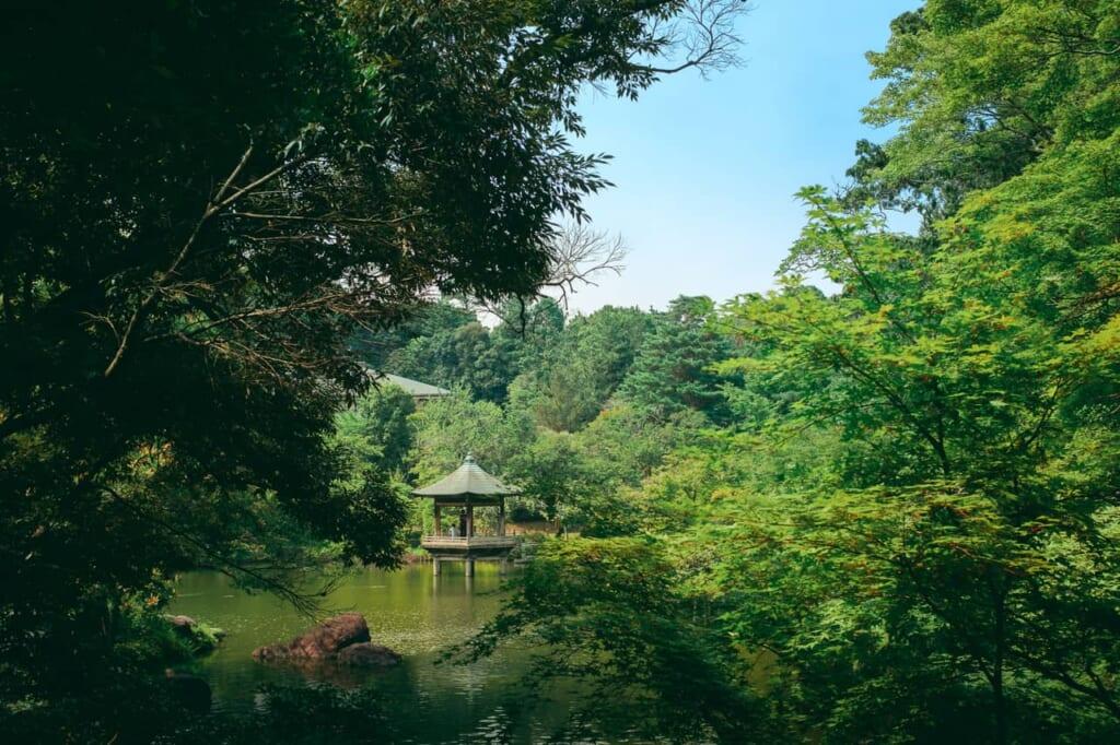 Una glorieta de estilo japonesa rodeada de naturaleza