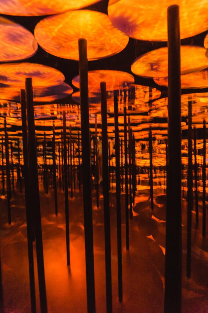 la sala del bosque de setas de luz en teamLab Borderless