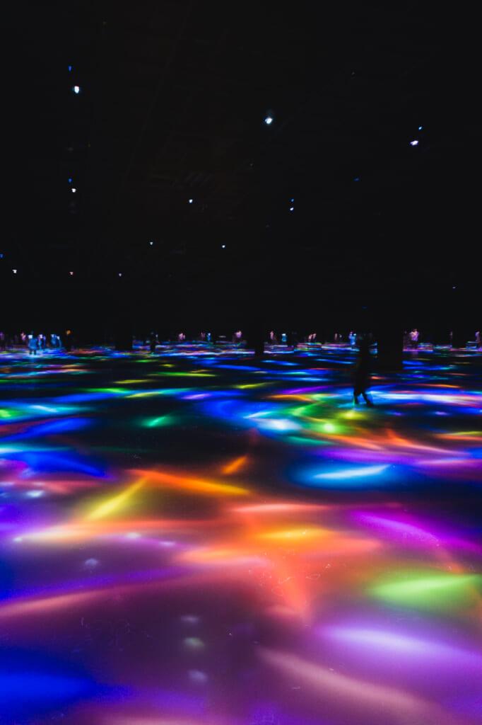 peces digitales de colores