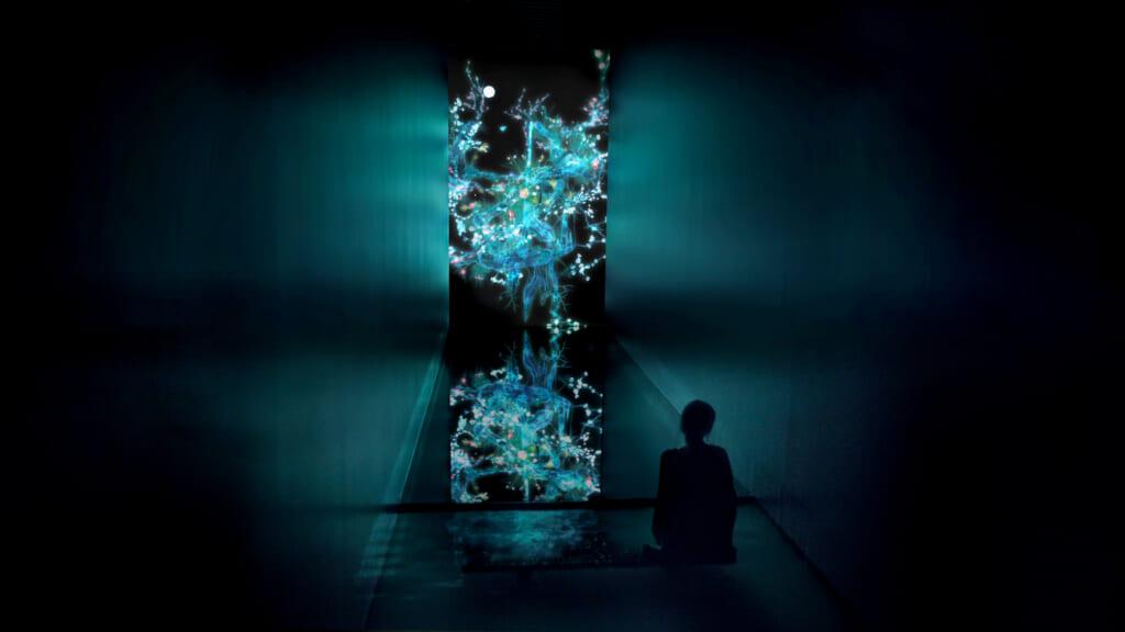 obra de arte Cold Life dentro del museo