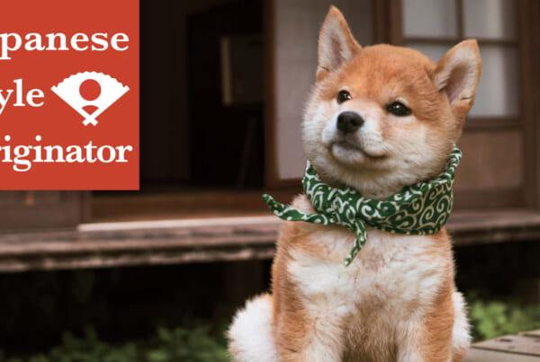 Programas japoneses en Netflix: Japan Style Originator
