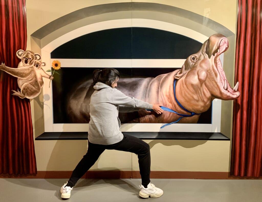 El Museo Tricky Art