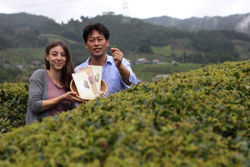 Productores de té japonés