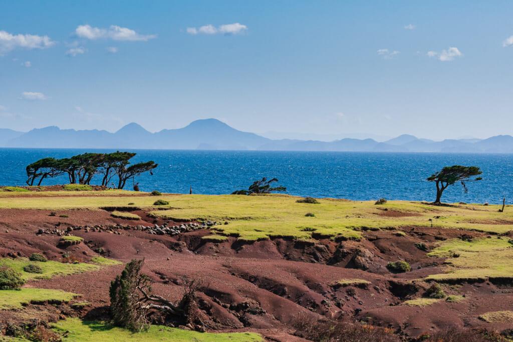 La sabana africana japonesa con montañas de fondo