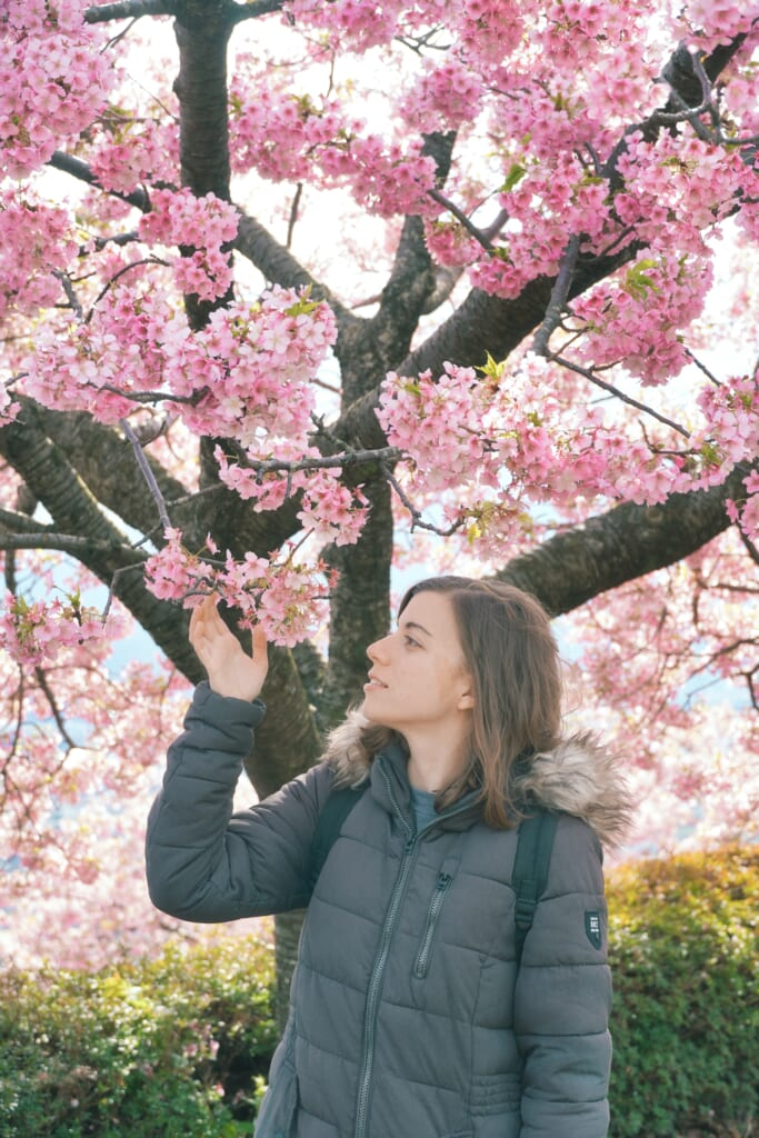 Maria observando una flor del cerezo en el Festival de los Cerezos en Flor de Matsuda