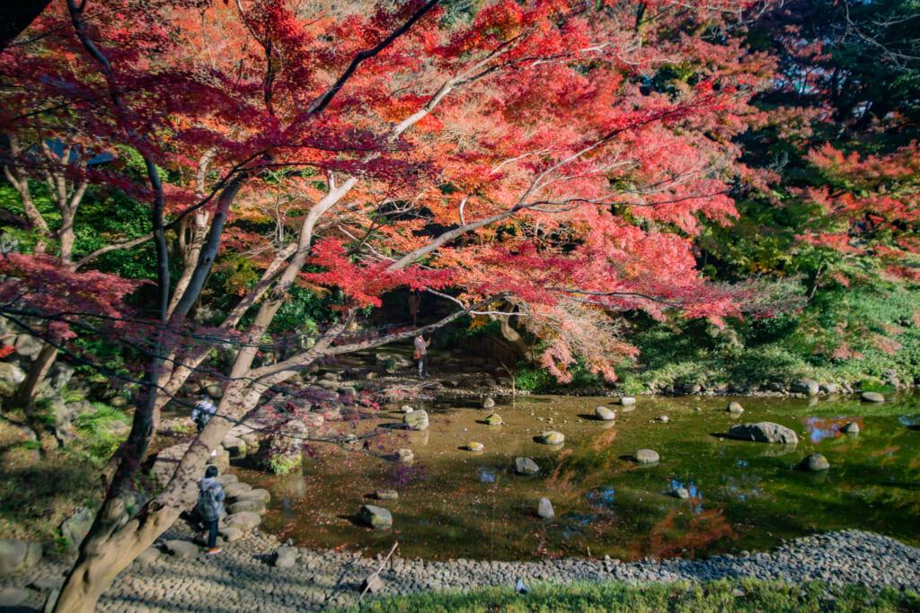 Parque Koishikawa Korakuen, parte del Hokuriku Arch Pass