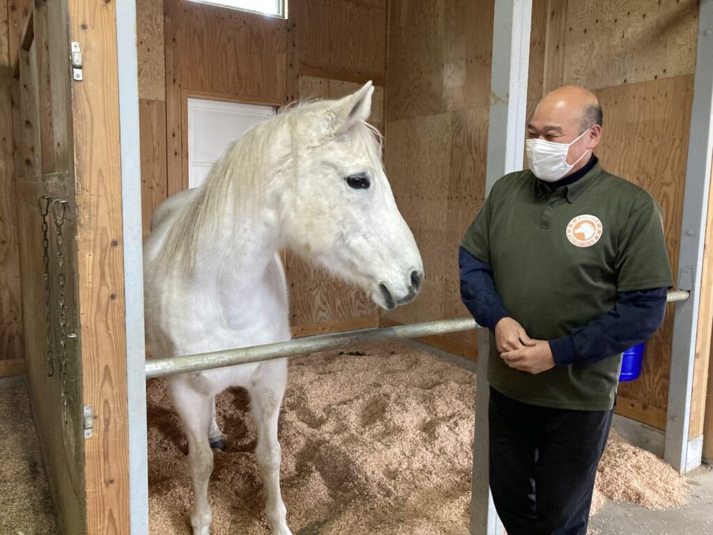 Un caballo de la granja San San en Iwami