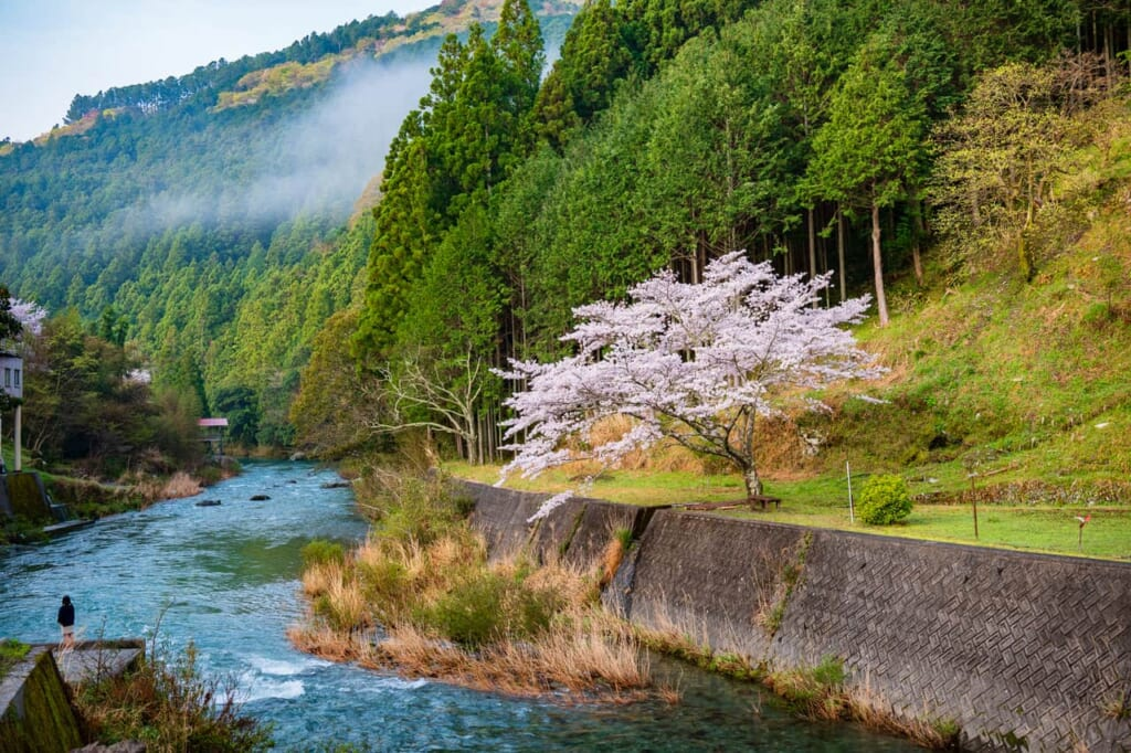 Las montañas japonesas son un regalo para las personas