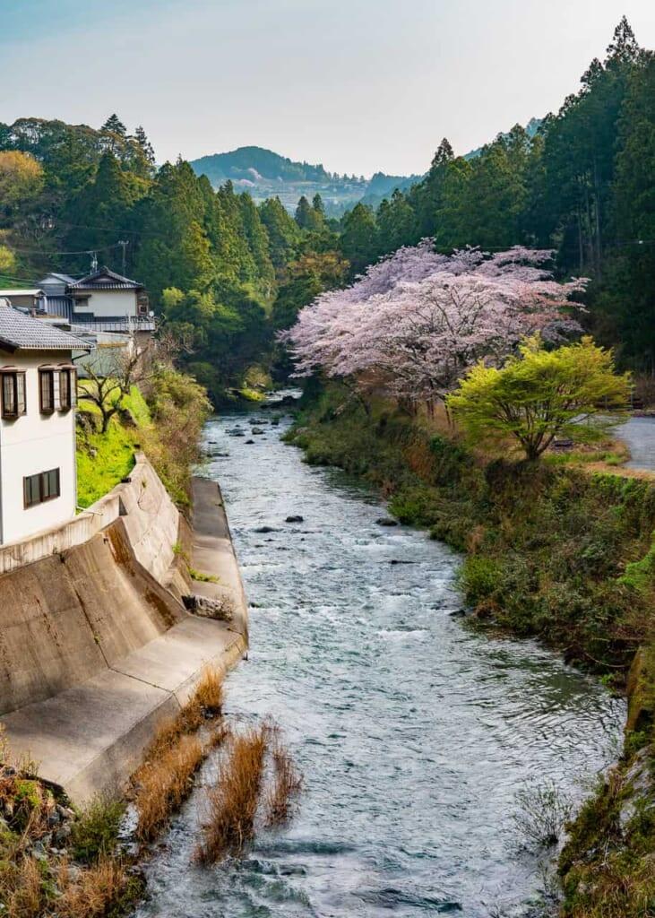 Río Atago por Hamamatsu, zona tradicional japonesa