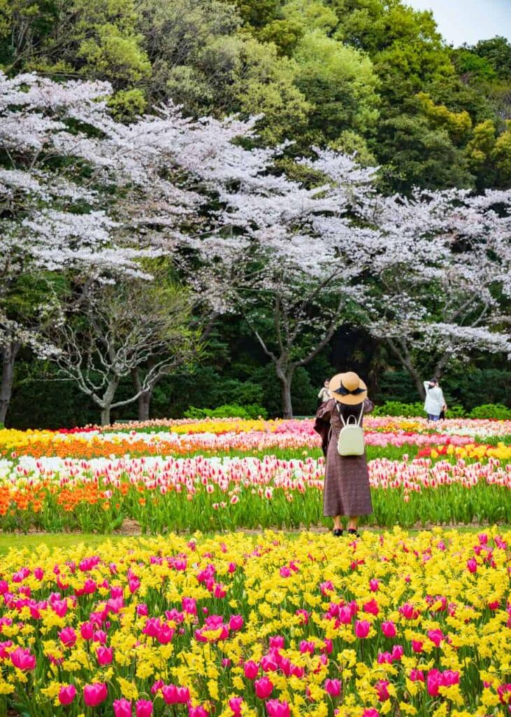 La belleza de este parque en Hamamatsuhace que la gente quiera tomar fotografías