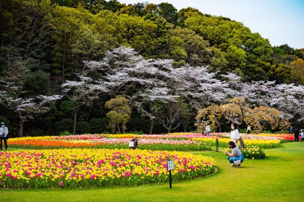Visión general del parque con flores, en Hamamatsu