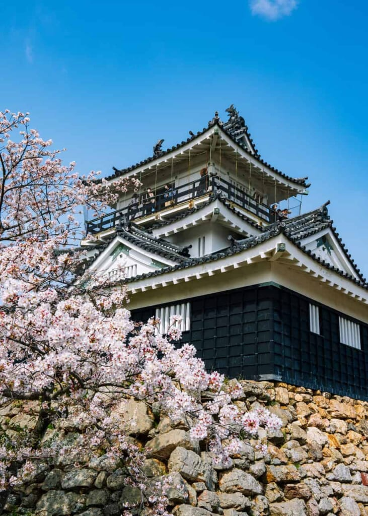 El pequeño y precioso castillo con cerezos en flor