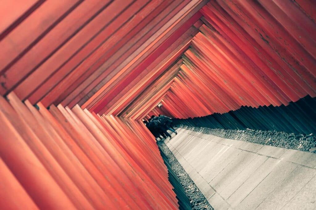 las famosas puertas torii del santuario fushimi inari taisha en Kioto