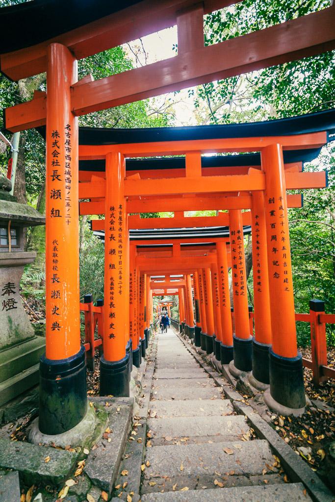 Puertas Torii en Fushimi Inari Taisha