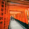 mil puertas rojas en Fushimi Inari Taisha
