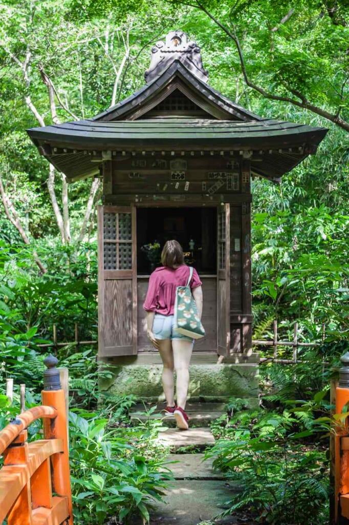Visitante del jardín japonés de Todoroki