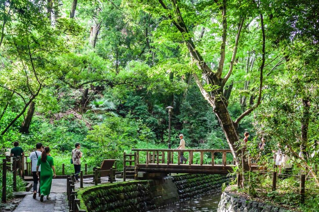 Puente en valle de Todoroki