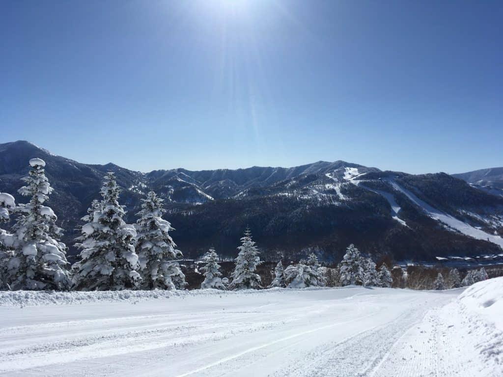 Garantierte Sensationen im Skigebiet Shiga Kogen – 2,5 Stunden von Tokio entfernt