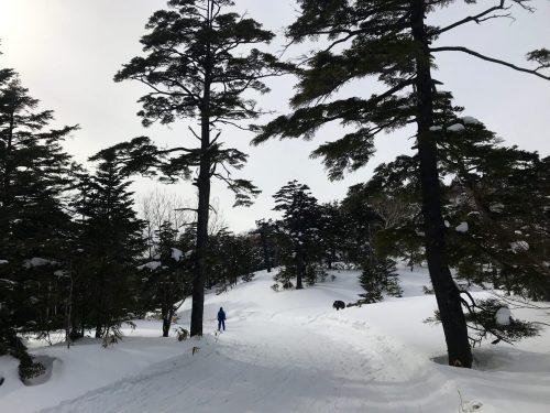 Genießen Sie Skifahren im Manza Ski Resort