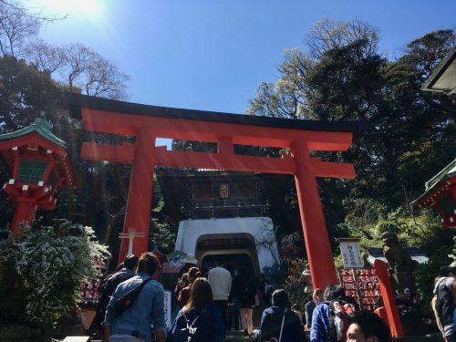 Das rote Tori-Tor vor dem Enoshima- Hauptschrein.