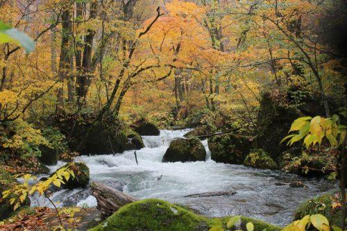 Der Fluss Oirase und der Towada-See in der Präfektur Aomori, Japan.