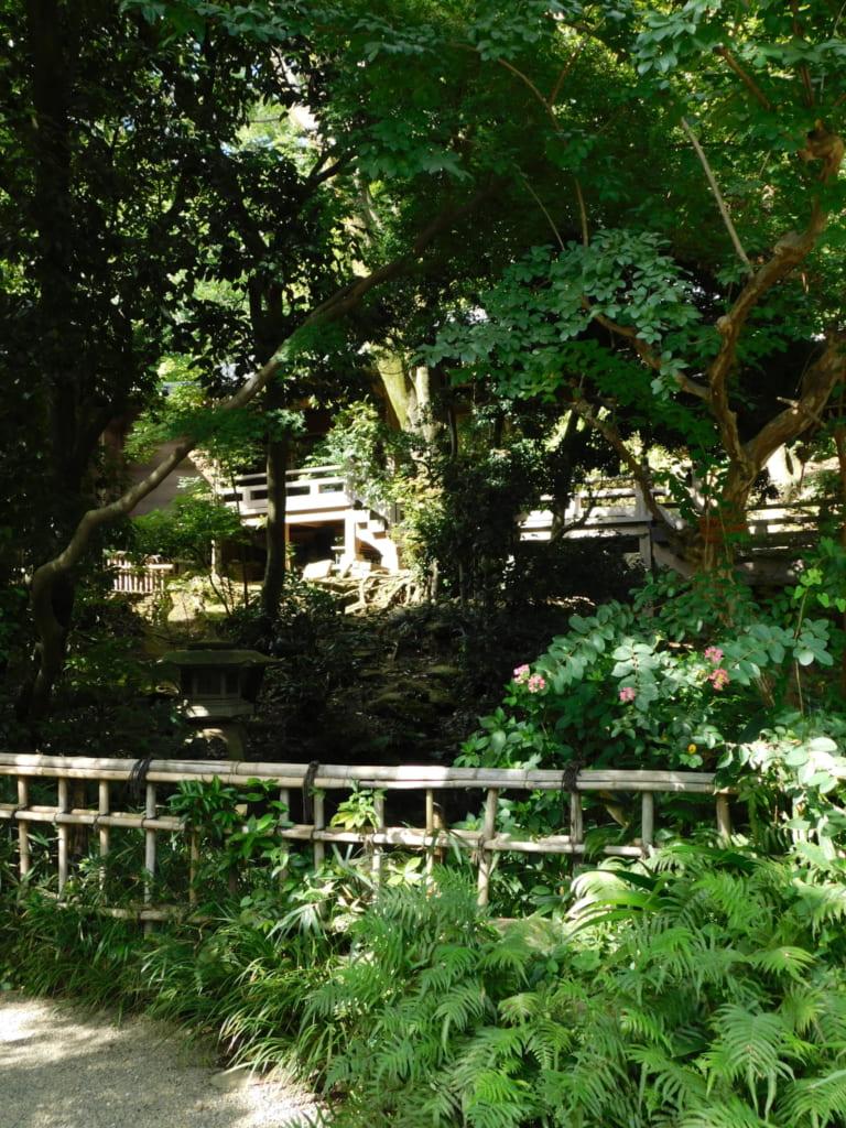 Die idyllische Umgebung des Tempels.