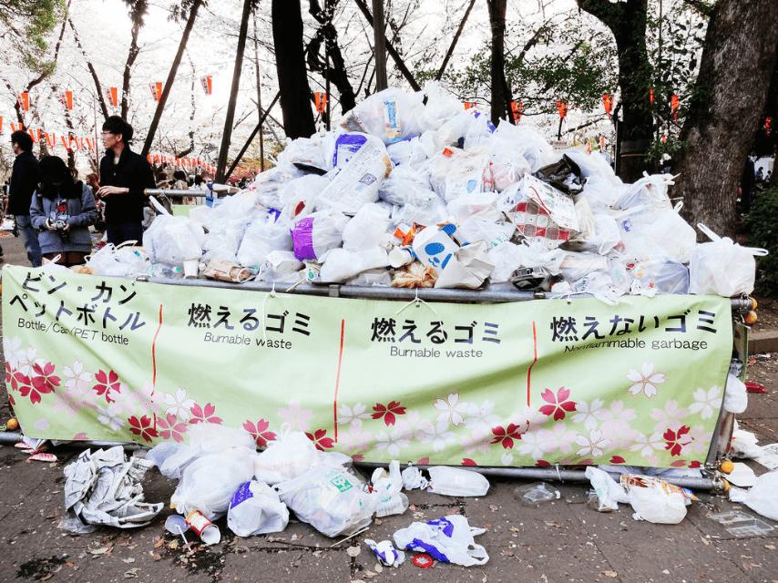 Oftmals gibt es keine Mülleimer bei den Kirschblüten-Schauplätzen.