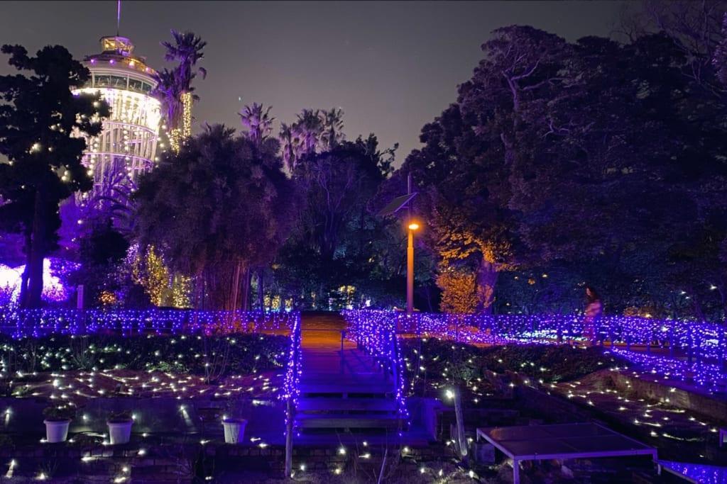 Das Juwel von Shonan, ein beleuchteter Garten.