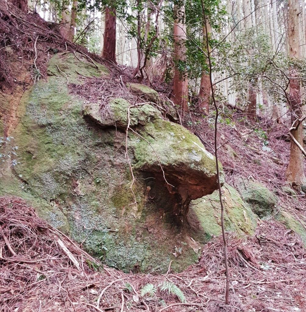 Ein Fels der wie ein Gesicht aussieht, auf dem Weg zum Shirai no Taki Wasserfall.