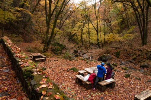 Es befindet sich ein Picknickplatz auf der Wanderroute.