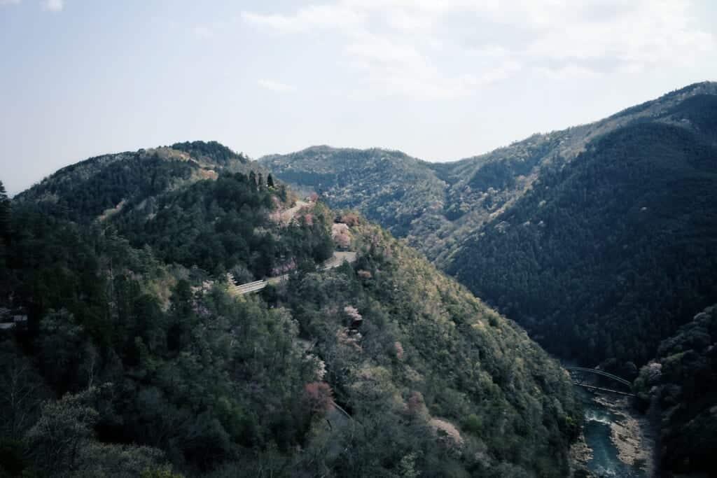 Ein Blick auf die Berge in der Hozukyo Schlucht