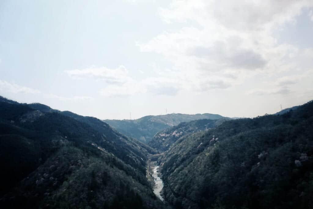 Panaromanlick auf die Schlucht in Arashiyama.