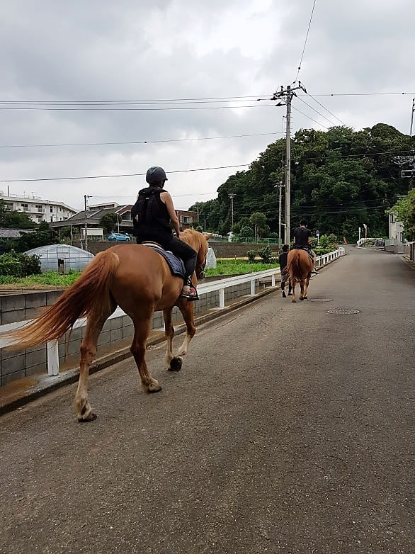 Durch die Straßen von Miura reiten.