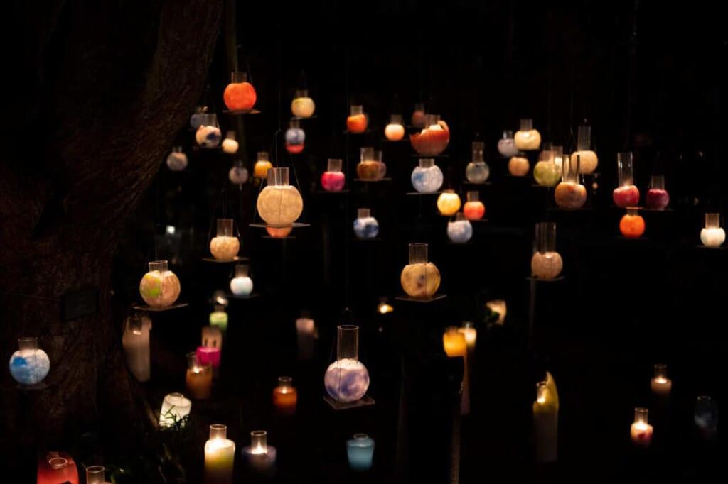 Kerzen hängen in einem Baum, Japan.
