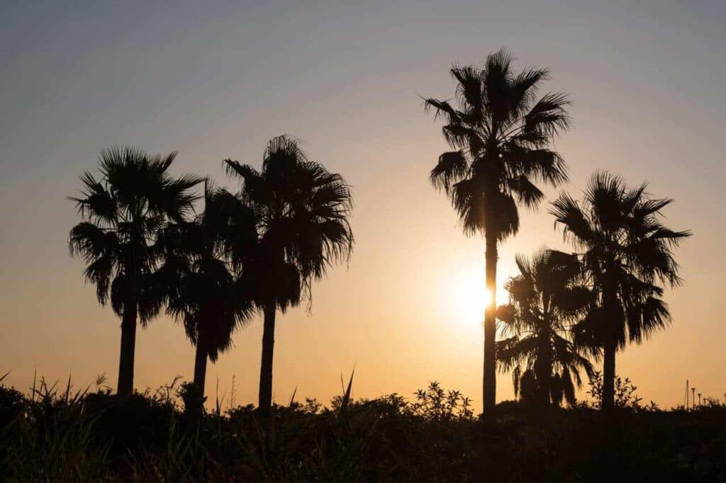 Sonnenuntergang auf der Insel Enoshima, Präfektur Kanagawa.