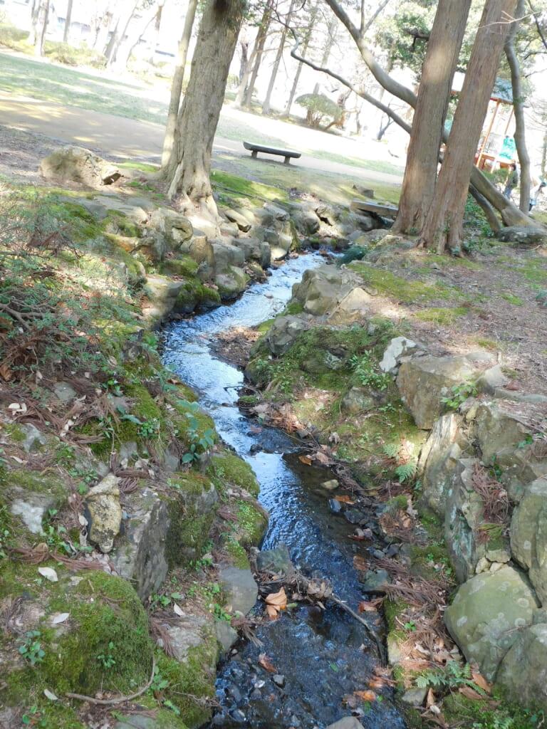 Ein kleiner Bach im Yahiko-Park.