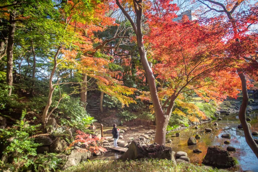 Der farbenprächtige Koishikawa Korakuen Garten in Tokio, Japan.