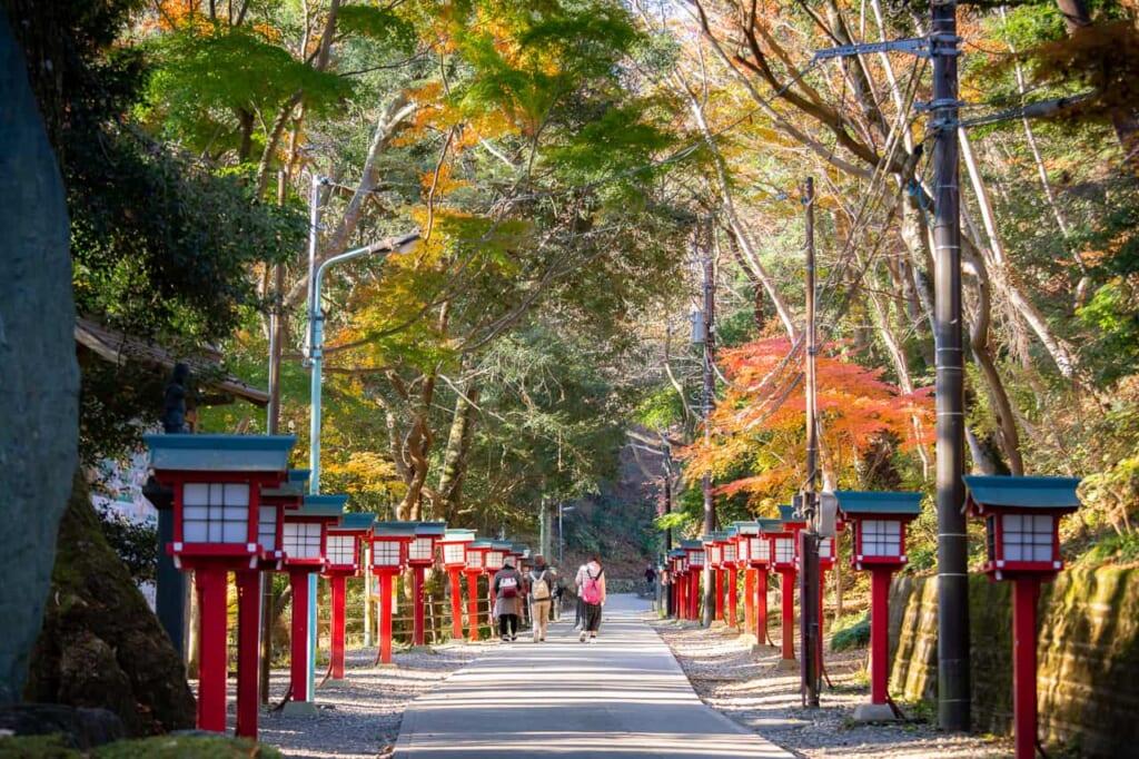 Der Omotesando Trail auf dem Berg Takao, erreichbar mit dem Hokuriku Arch Pass.