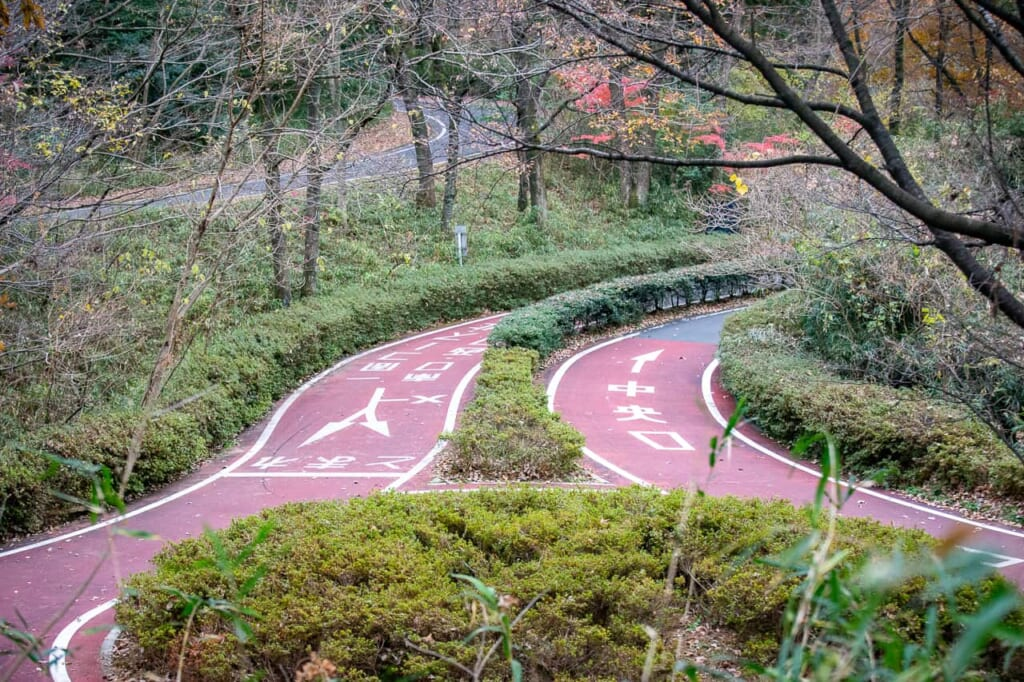 Der Radweg im Musashi Kyuryo Park.