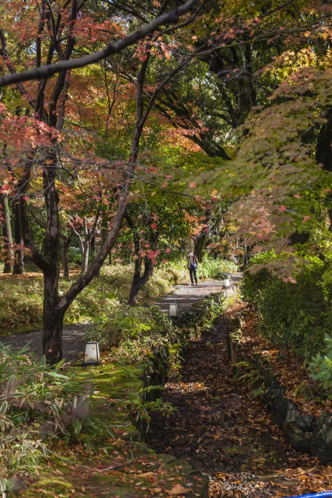 Herbstlaub im Yokokan Garten in der Präfektur Fukui.