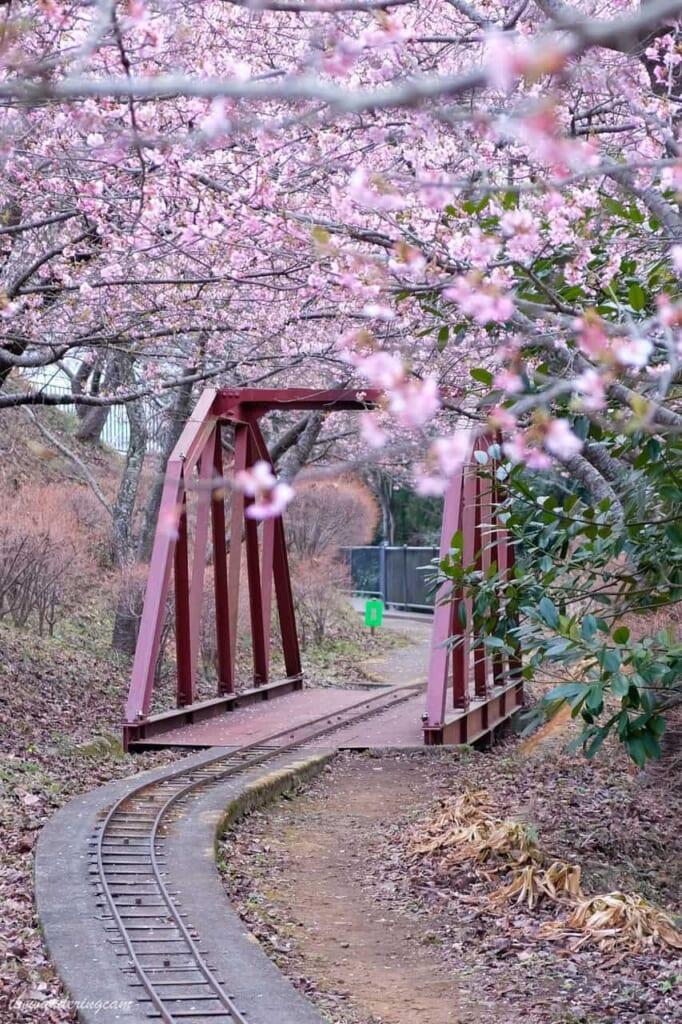Schienen der Furusato Bahn im Nishihira Park in Matsuda.