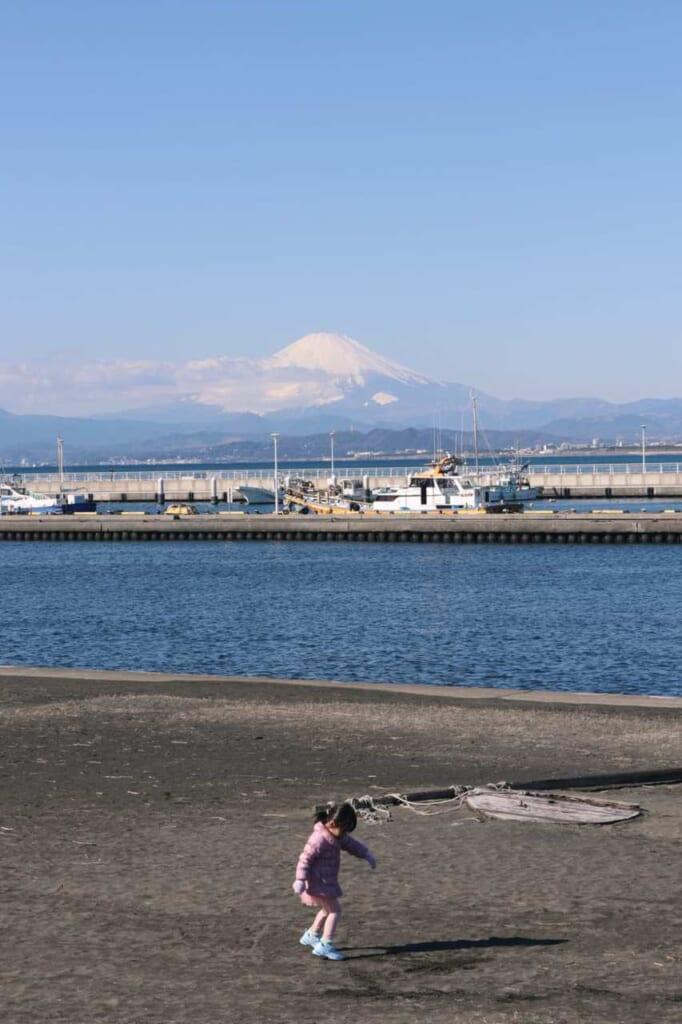 Panorama da Enoshima con il Monte Fuji in lontananza