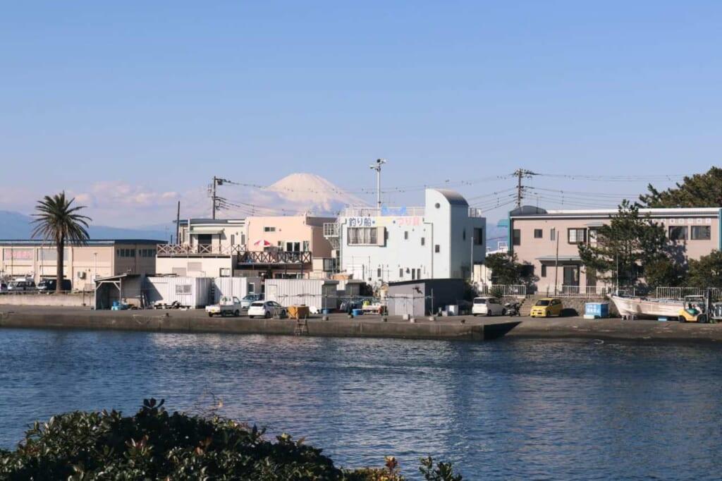 Panorama con il monte Fuji in lontananza