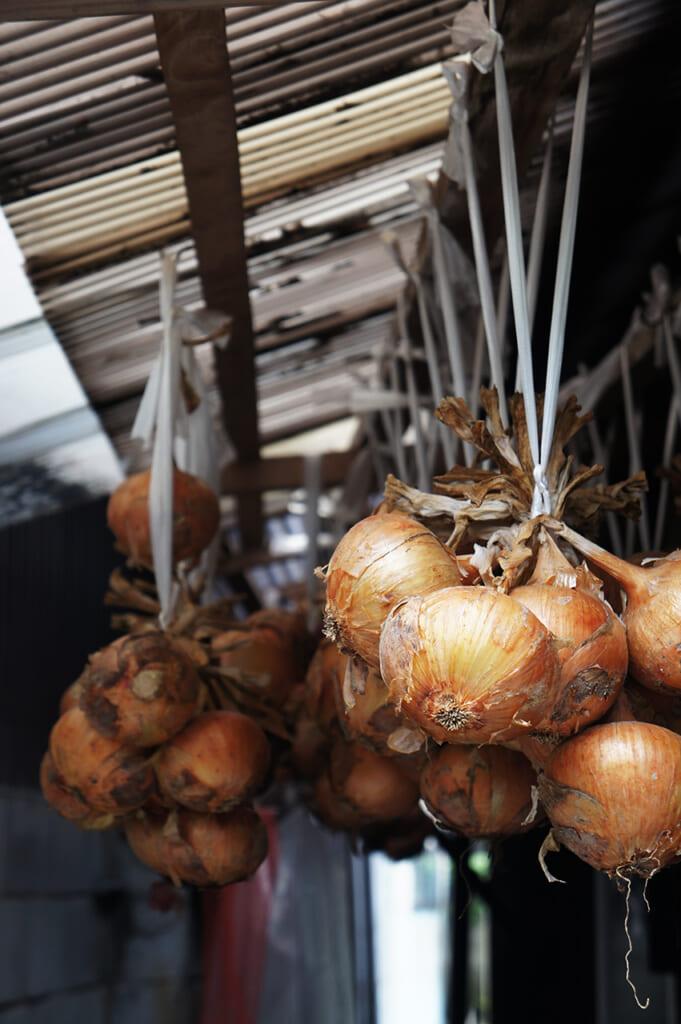 Mazzi di cipolle appesi al soffitto