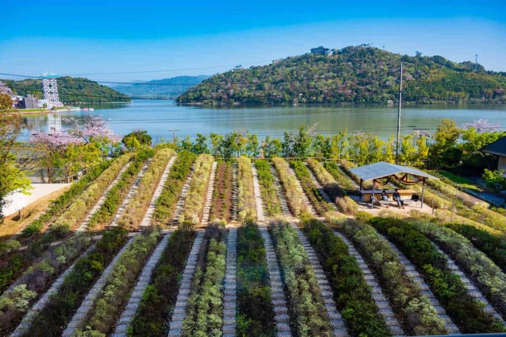 Vista sul lago Hamana