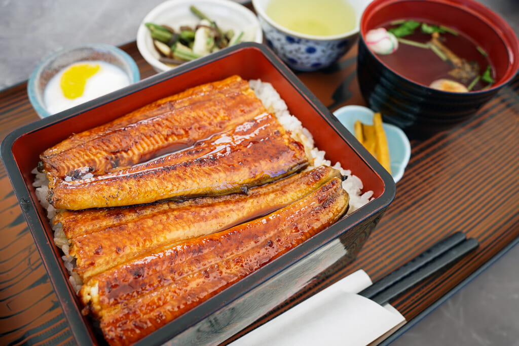 Piatto di unagi alla griglia su letto di riso